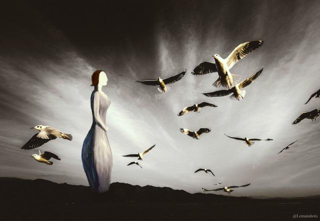 Lemanshots_Birds